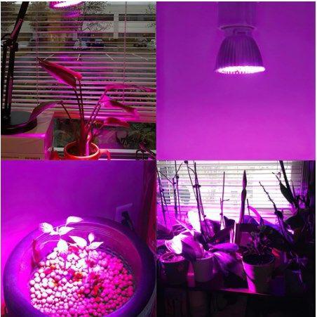 Лампа для растений(фитолампа)