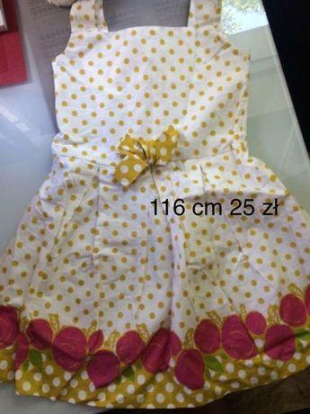 sukienka w kropki 116 cm wyprzedaż szafy
