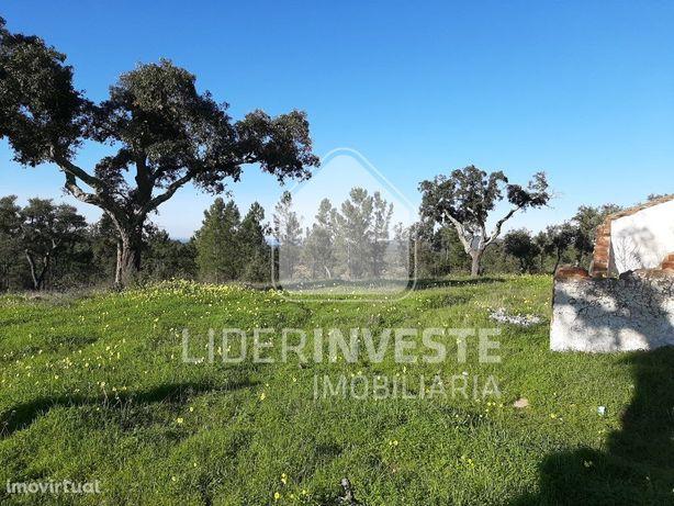 Terreno agrícola 14 ha | Viabilidade de Construção | Alvito