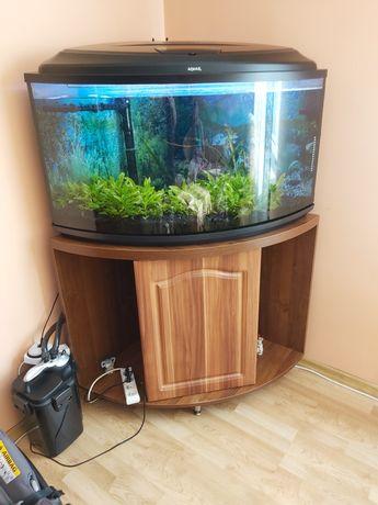 Narożne akwarium 180l z szafką i osprzętem