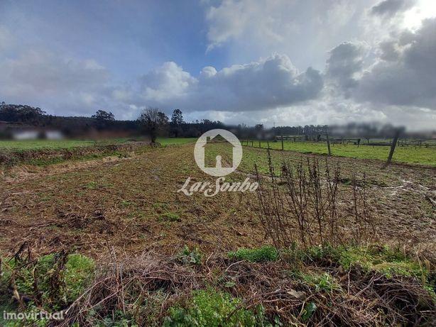 Terreno agrícola c/1200 m2 - Fradelos, Vila Nova de Famalicão