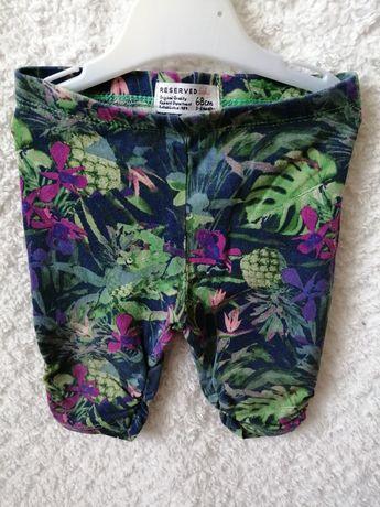 Leggi spodnie getry 68