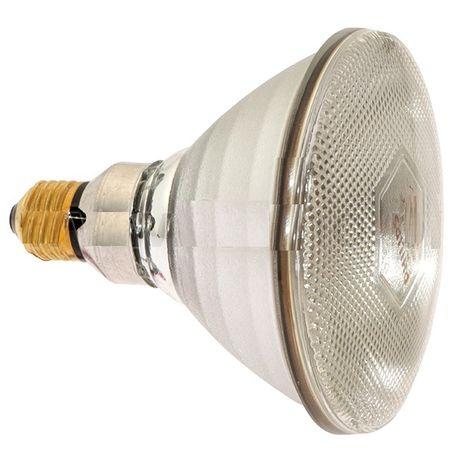 Żarówka do promienników Philips 100WAT biała - szkło zbrojone