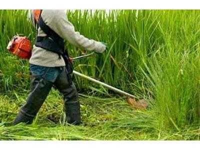 Koszenie trawy, prace ogrodowe,prace budowlane.