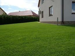 Профессиональная укладка рулонного газона. Низкая цена, гарантия