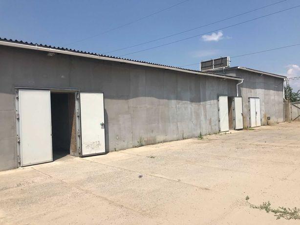 Холодильные камеры-склады, офис, территория 20сот