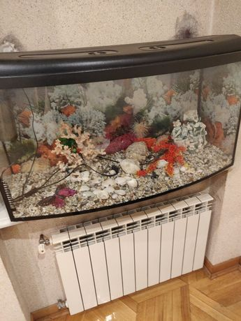 Акваріум для риб на 150л