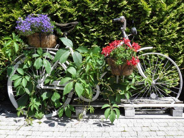 Stary rower , kwietnik, dekoracja ogrodu