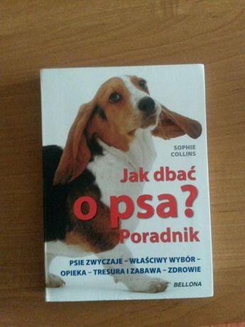 Jak dbać o psa? Poradnik