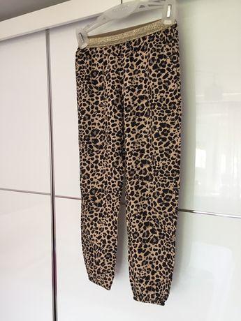 Spodnie damskie,panterka,dresy,dziewczęce H&M- #8
