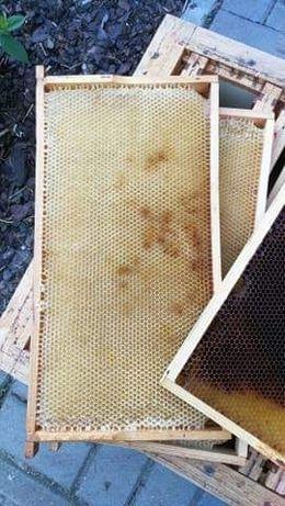 Ramki pszczele z suszem