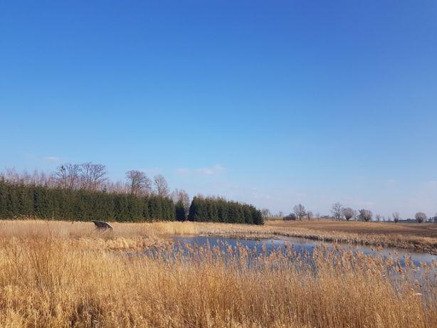 Sprzedam działki 6,4 ha staw, las, łąka