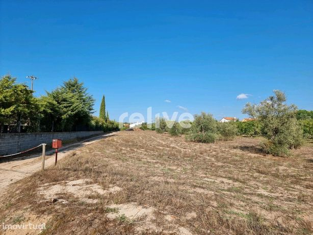 Terreno para construção com 555 m2 em Carregueira (Chamusca/Santarém)