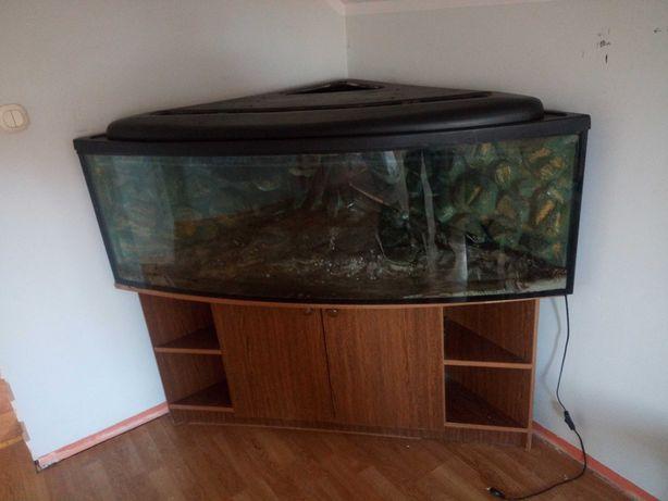 Akwarium narożne