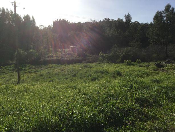 Terreno com 2,8 hectares,casão,água e luz São Luís,12km Milfontes
