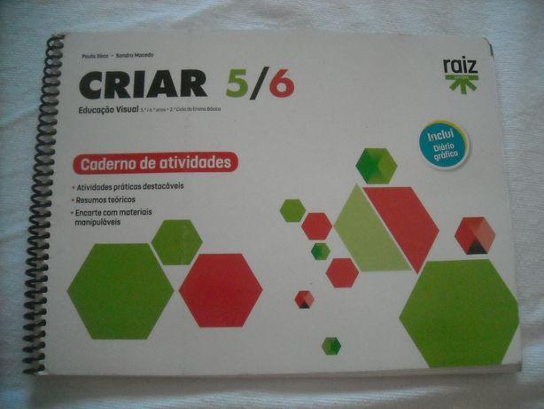 Criar Educação Visual 5/6
