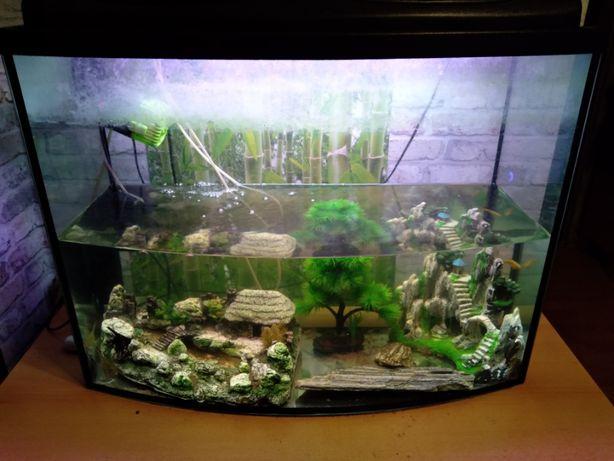 Akwarium 156l+wyposażenie