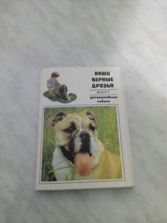 Продам набор открыток собак