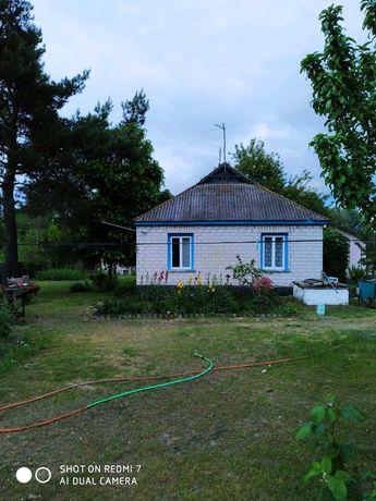 Продаю дом в Киевской области, с. Старое