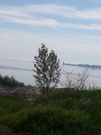 Земельна ділянка біля річки Дніпро в с. Червона Слобода.