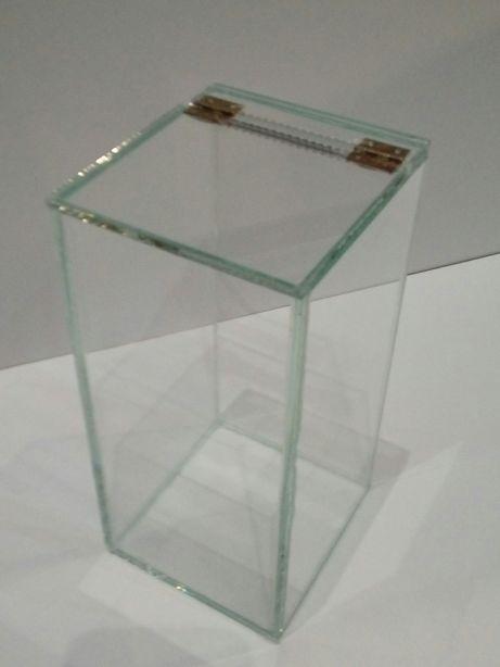 Terrarium szklane 10x10x20. Ptasznik nadrzewny. Modliszka.