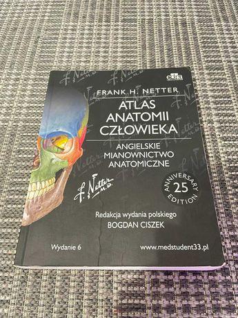 Atlas anatomii Netter - angielskie mianownictwo (angielski)