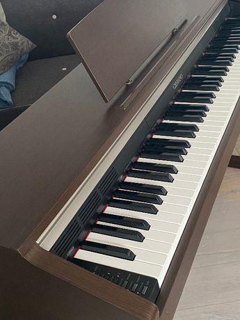 pianino cyfrowe CELVIANO, CASIO AP-220BN