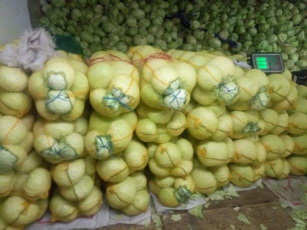 Продам белокачанную капусту с поля