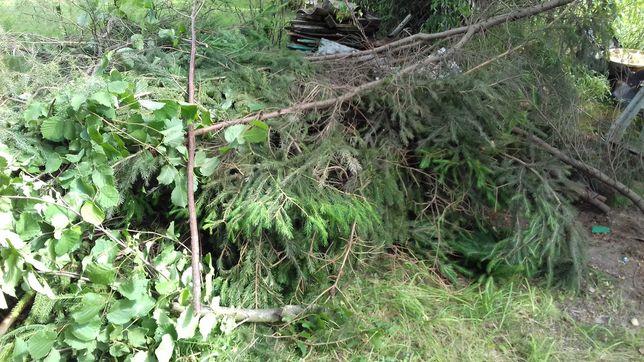 Dom  i ogród drewno  na oplal.