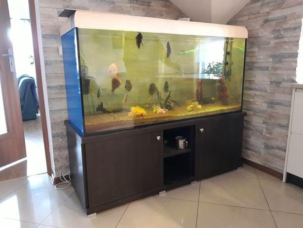 Akwarium 550 l Irka