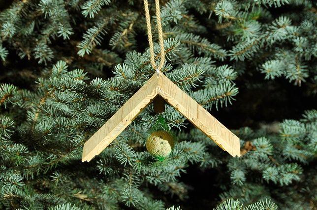 Karmnik drewniany dla ptaków wykonany z drewna iglastego – 9