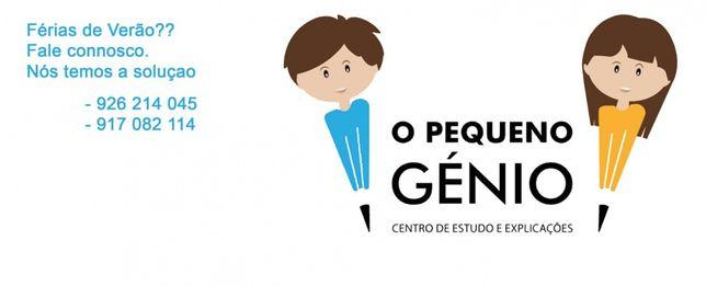 """Ocupação de férias e centro de explicações """"O Pequeno Génio"""" em Azurva"""