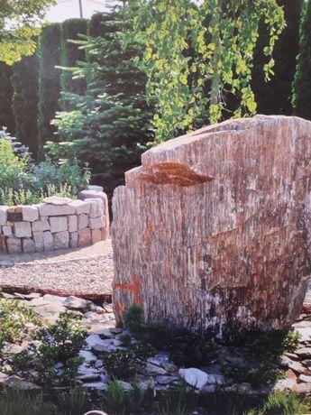 duże głazy ogrodowe, głazy gnejsowe, Kamienie Złotniki