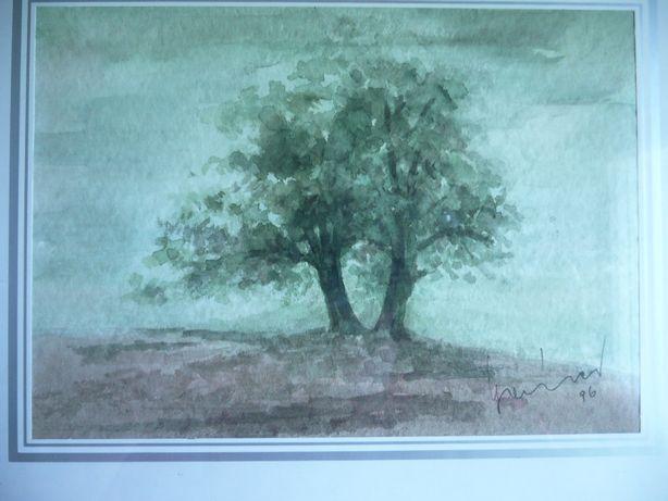 Sygnowana PD rok 1996 akwarela za szkłem w ramie pejzaż obraz