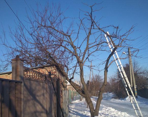 Обрезка сада, деревьев, винограда, обработка сада, опрыскивание сада