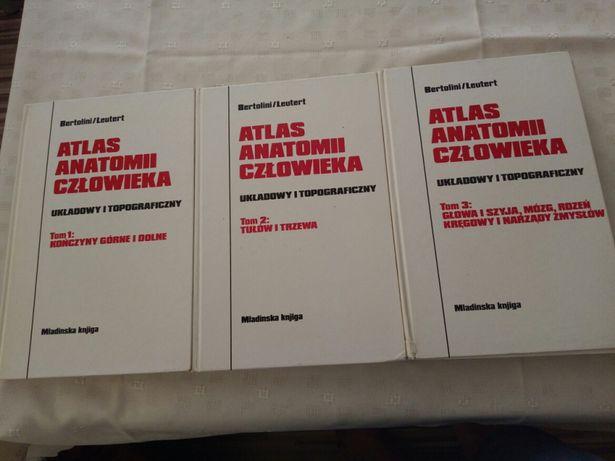 Atlas anatomii człowieka. Układów i topograficznych.