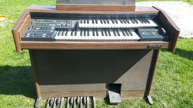Organy Orla