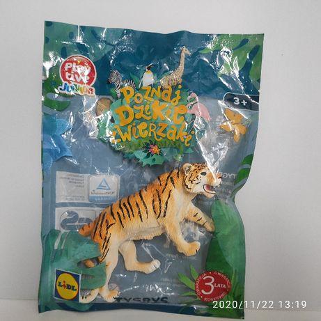 Poznaj dzikie zwierzaki - Tygrys