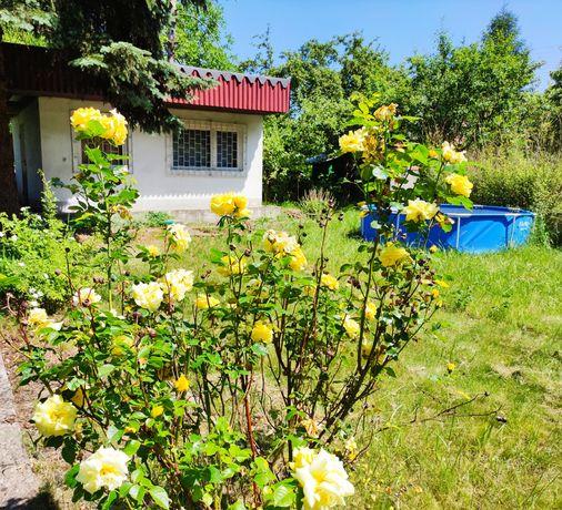 Ogródek działkowy ROD Wypoczynek
