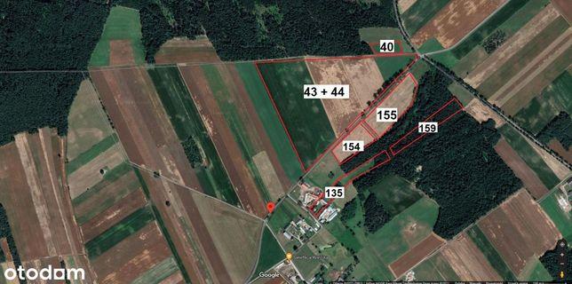 Gospodarstwo Rolne (44HA) Budynki, Grunty Orne