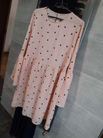 Sukienka 44 plus size