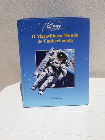 Disney edições selvat
