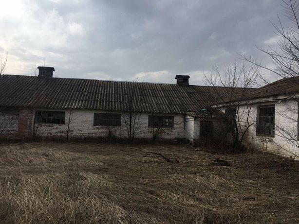 Ферма с. Селище, Лебединський район, Сумська область