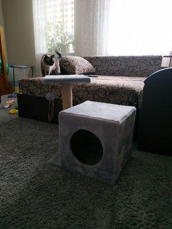 Кошачий домик                 .