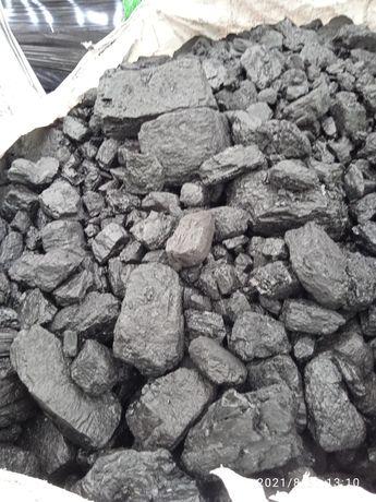 Węgiel orzech w big bagach