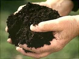 Чернозем чистый, плодородный, рассыпчатый, в мешках и навалом.
