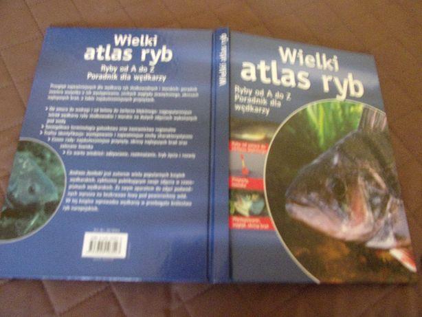 Wielki Atlas Ryb. Ryby od A do Z. Poradnik dla wędkarzy.