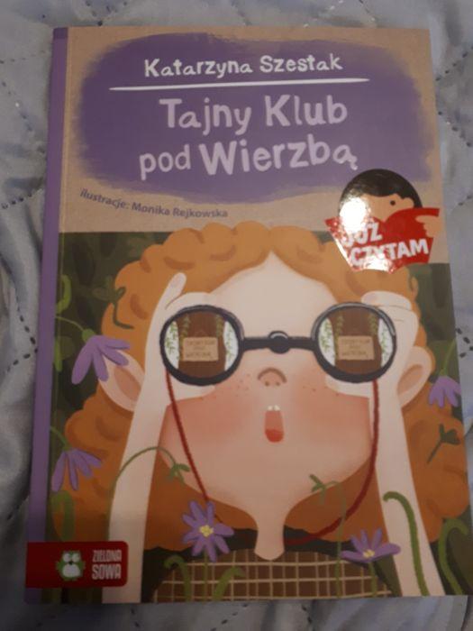 Książka tajny klub pod wierzbą Wilczyce - image 1