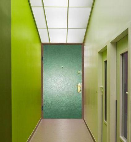 Входные металлические железные двери в квартиру дом офис на тех этаж