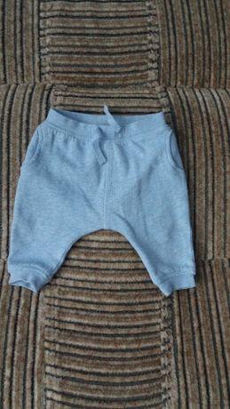 спортивні штанці NEXT для хлопчика